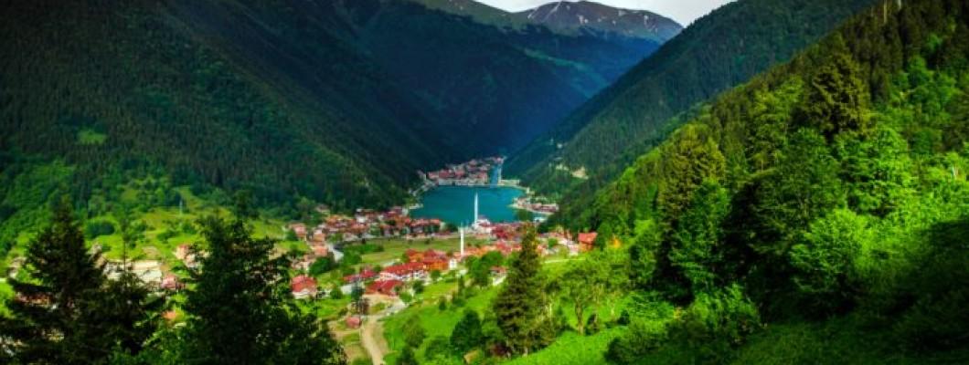 Trabzon Matbaa Hizmetleri